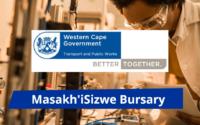 Masakh'iSizwe (MiS) Bursary Program
