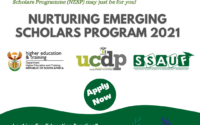 The Nurturing Emerging Scholars Program